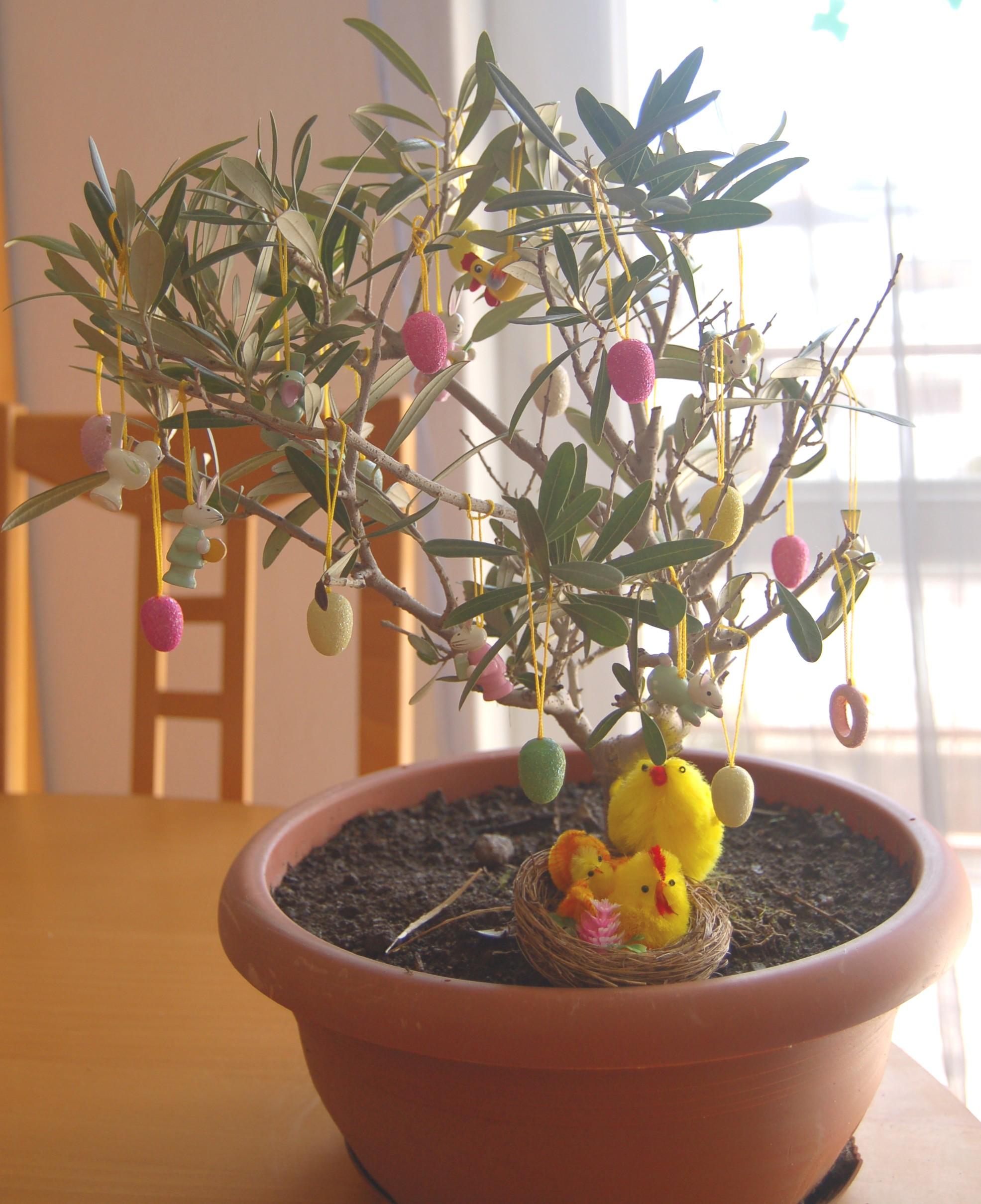 Piante Da Regalare A Pasqua lavoretti bambini pasqua